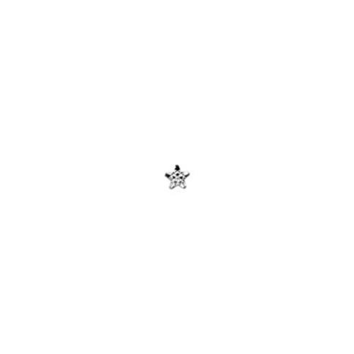 ster w goud 3.3/3.4