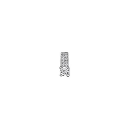 Zilveren Hanger Zirk
